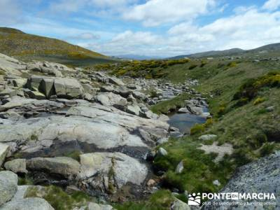 Parque Regional Sierra de Gredos - Laguna Grande de Gredos;excursiones de fin de semana desde madrid